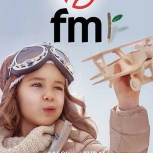 FM CALEFACIÓN PELLEST